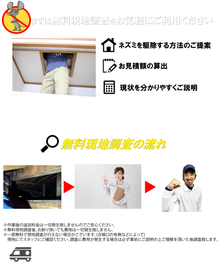 神奈川ネズミ駆除